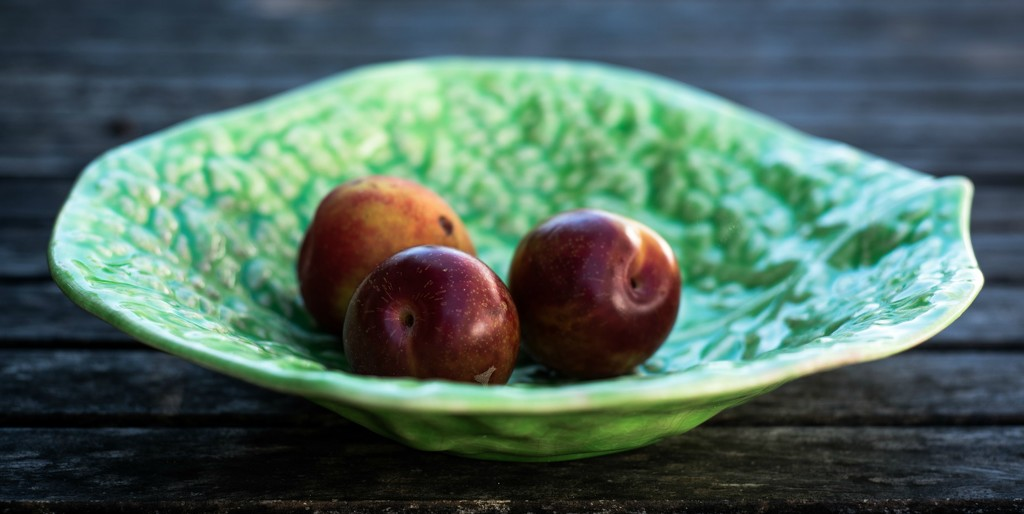 Plums Still life  by brigette