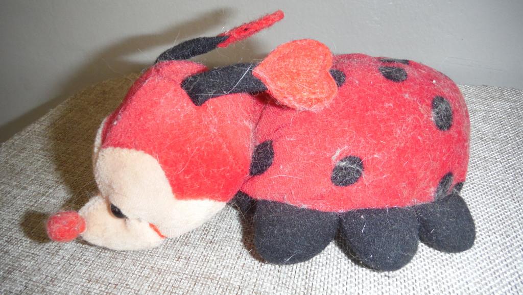 Red Lucy Ladybird by spanishliz
