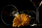 16th Mar 2020 - Gerbera & Glass