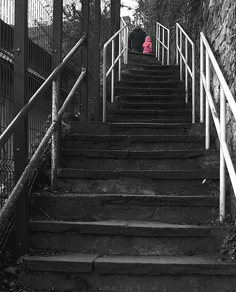 Girl in a Pink Coat, Take 2 by redandwhite