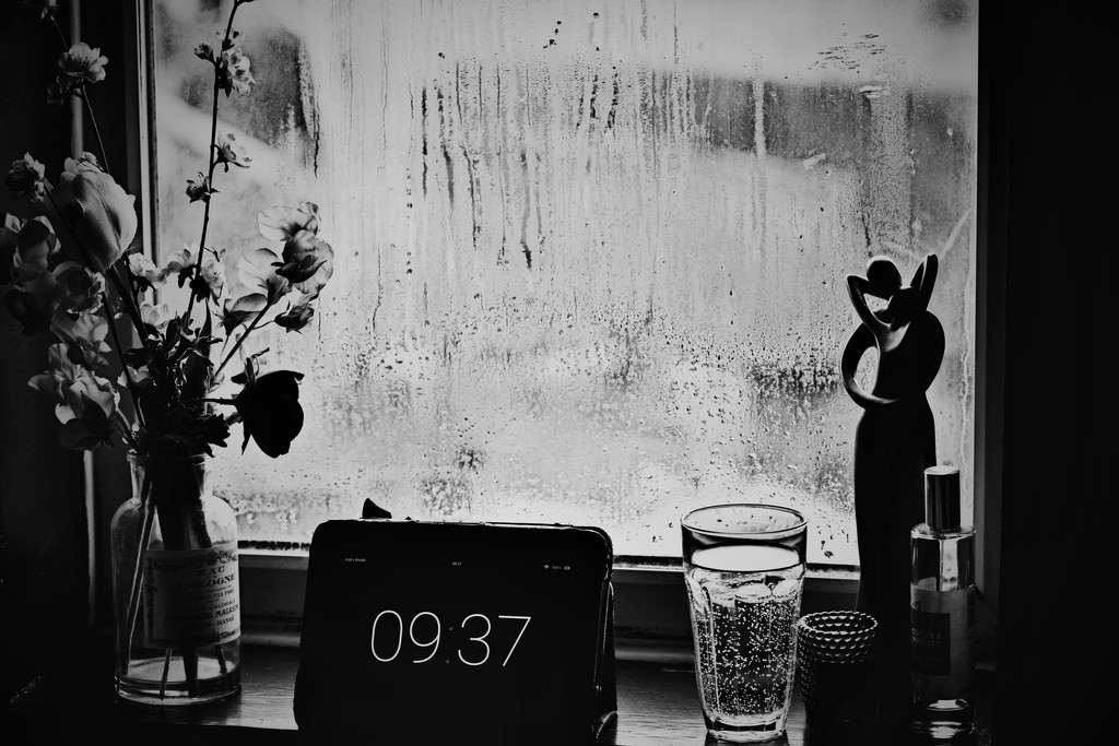 69-365 Rainy Morning by gailmmeek