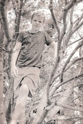 17th Mar 2020 - Young Men in Trees