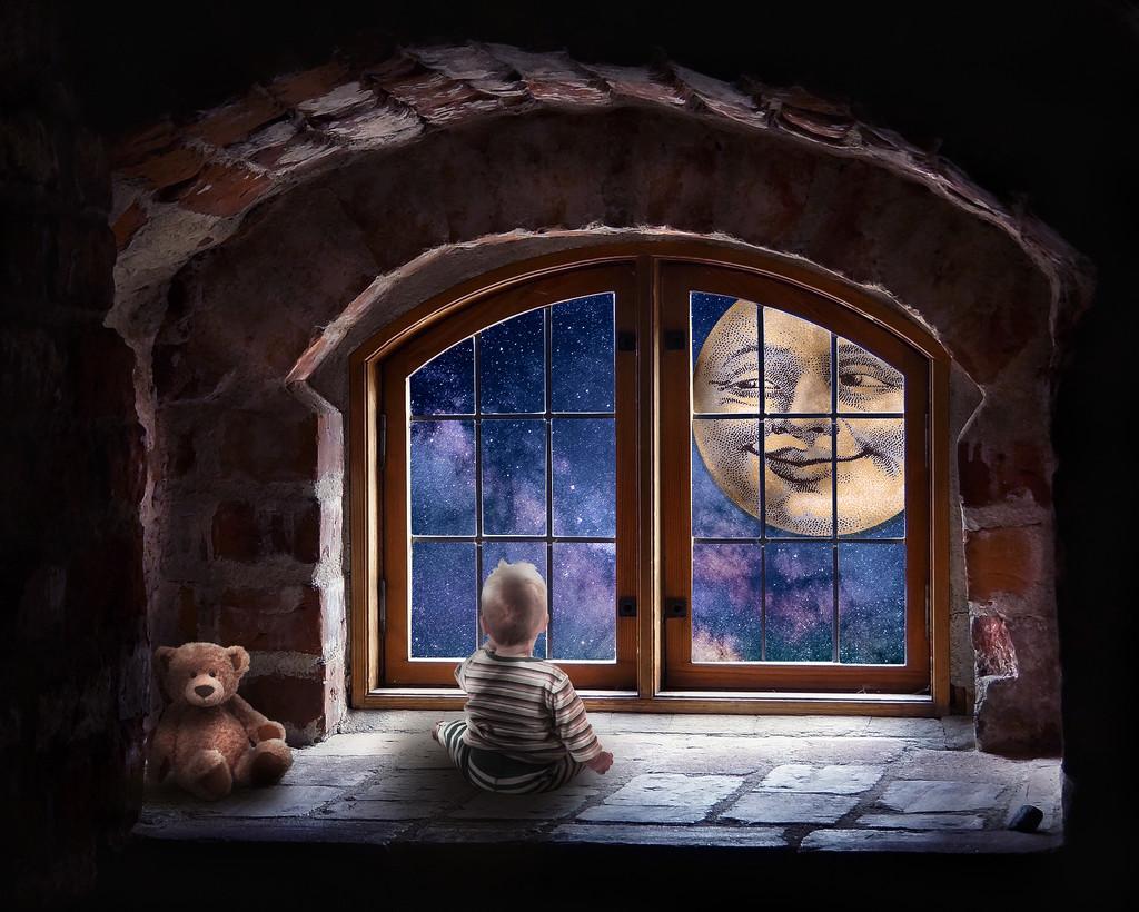 Looking Through The Window by rosiekerr