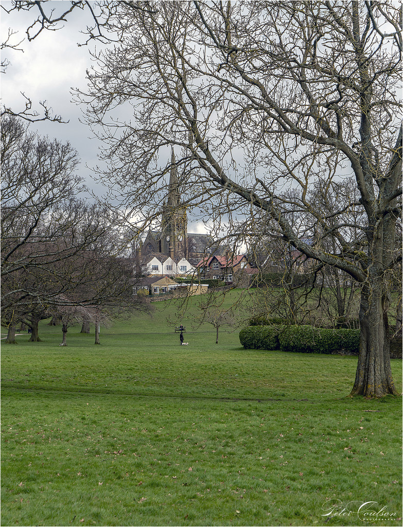 Across the Park by pcoulson