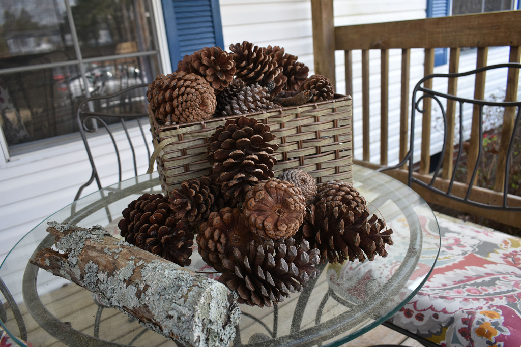 Natural Decorations by homeschoolmom