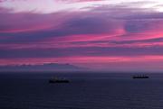 19th Mar 2020 - Sunrise from Godley Head Christchurch NZ