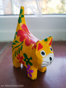 18th Mar 2020 - Yellow Cat