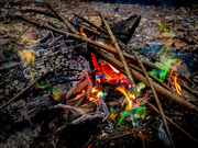 17th Mar 2020 - Dragon Flames