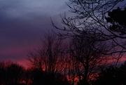19th Mar 2020 - The sky tonight from my patio tonight............