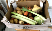 20th Mar 2020 - Morrison's Wonky Vegetable Box