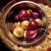 20th Mar 2020 - Onions