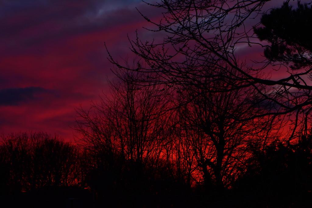 Another lovely sky tonight............... by ziggy77