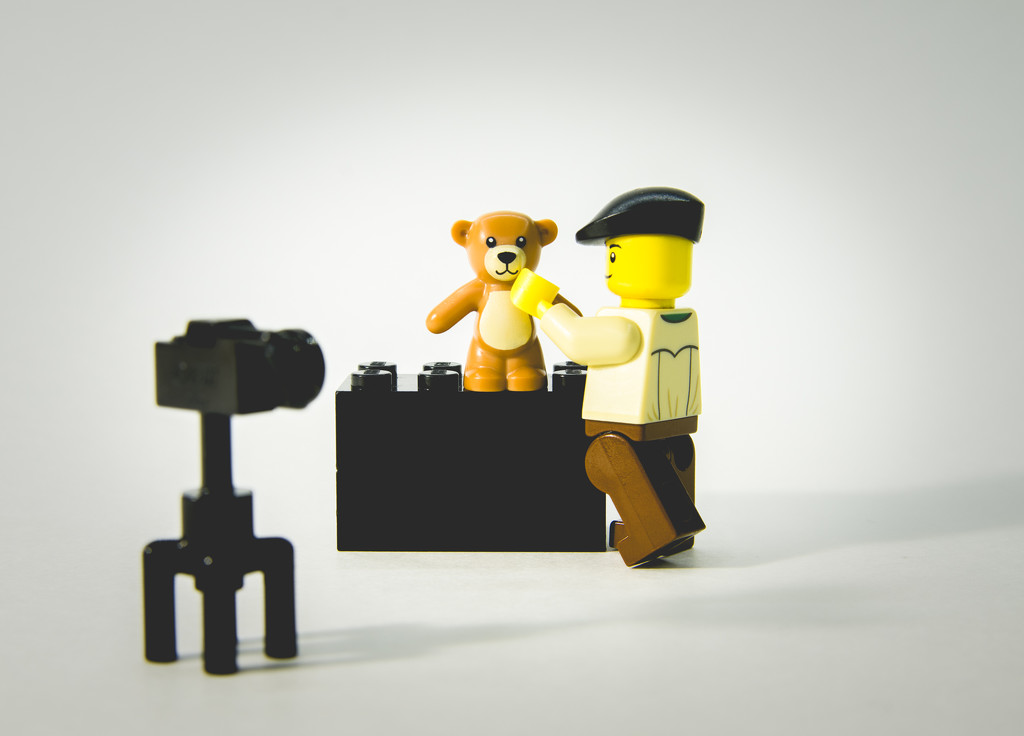(Day 36) - Bear Necessities by cjphoto