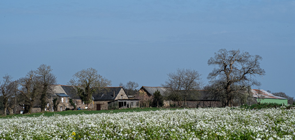The Farm Across the Fields... by vignouse