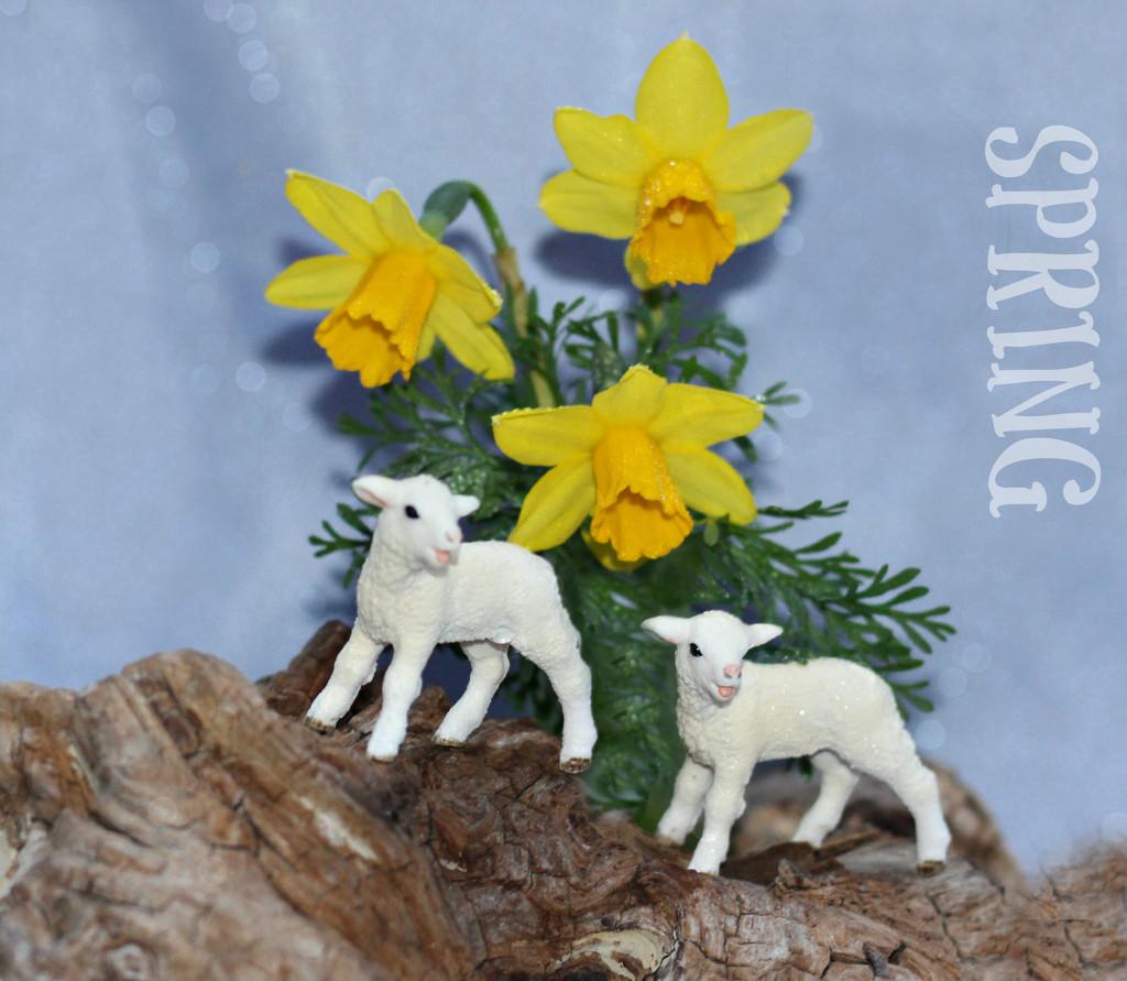 Spring  by wendyfrost