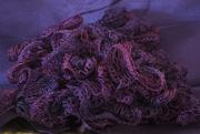 21st Mar 2020 - Purple Scarf - Rainbow2020