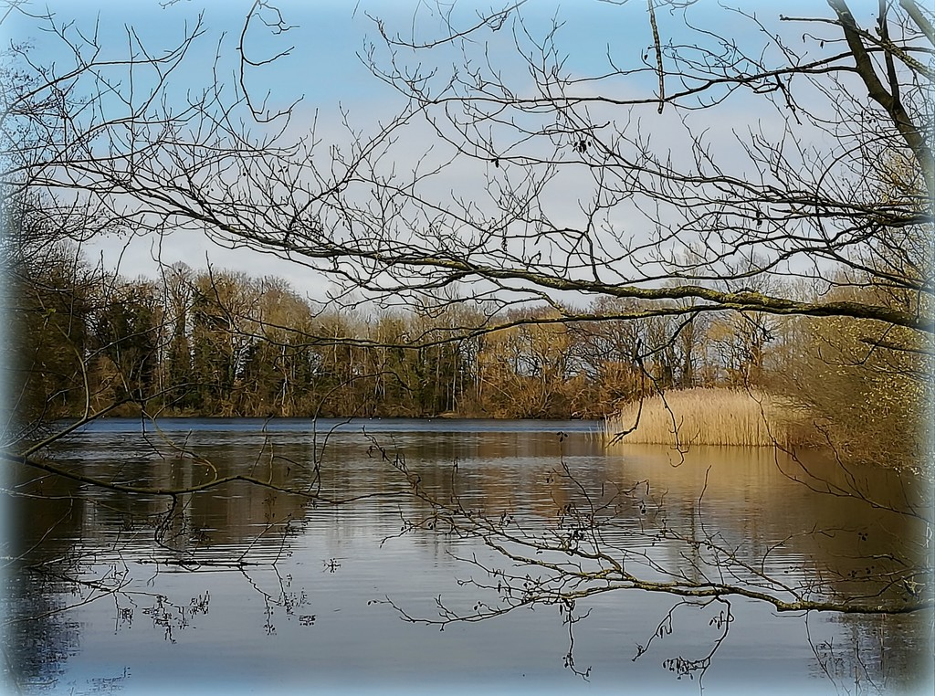 Paxton lakes by busylady