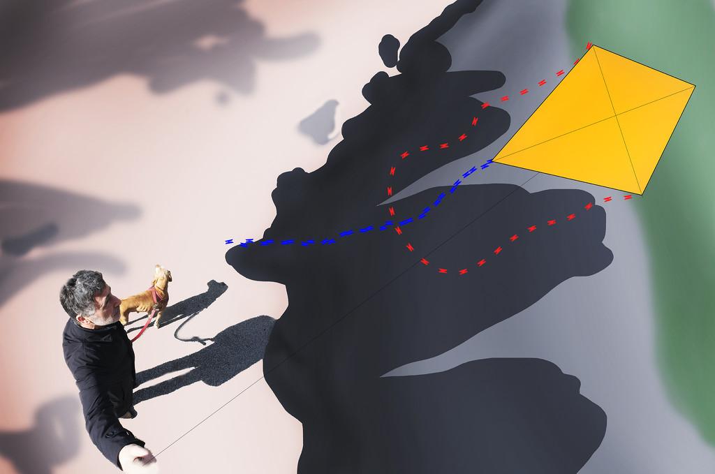 The kite #2 by domenicododaro