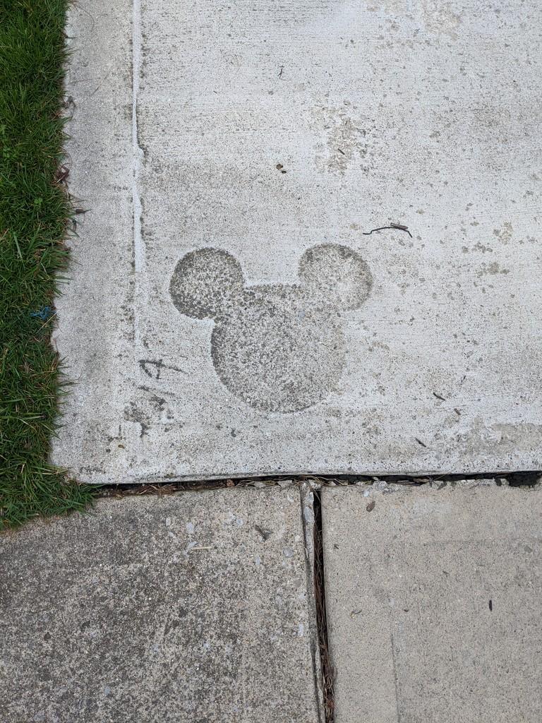 Disney Dreaming by photogypsy