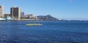 17th Dec 2019 - Waikiki Dragon Boaters