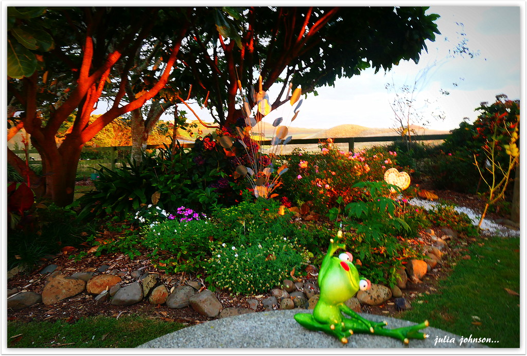 The other frog in the garden... by julzmaioro