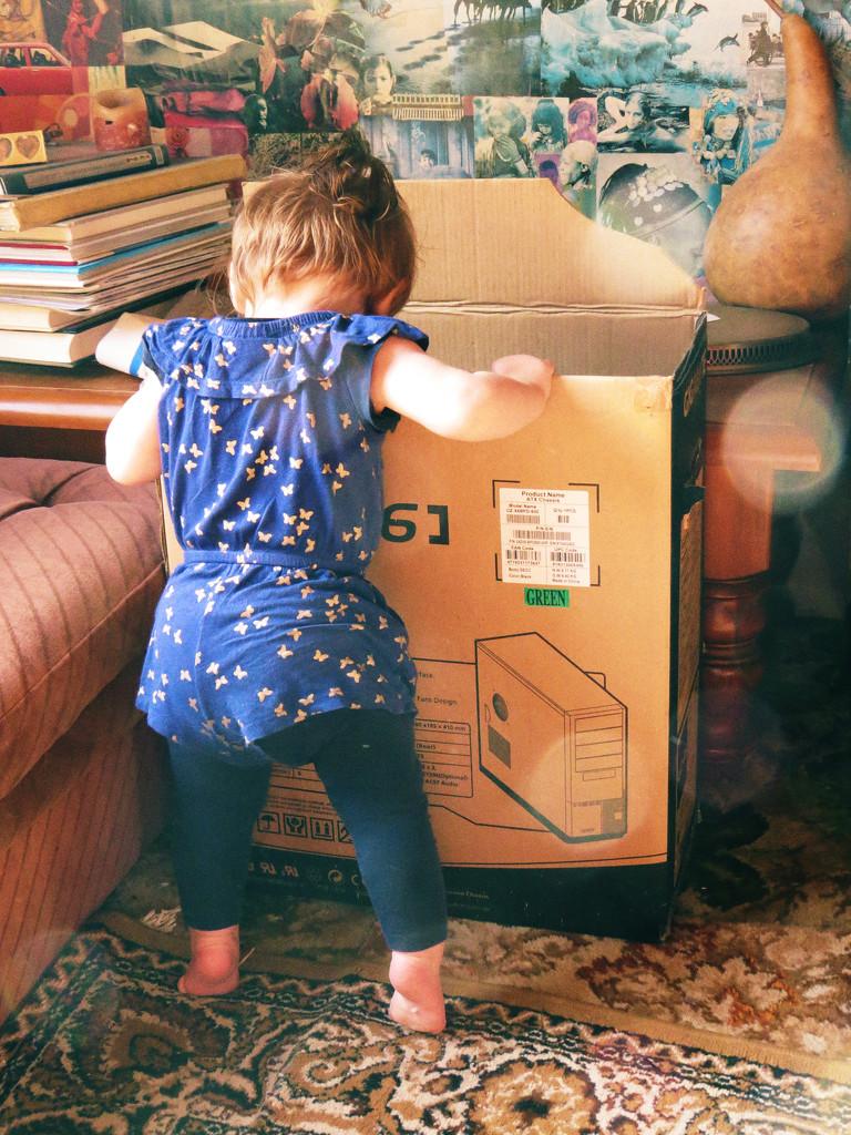 boxes by kali66