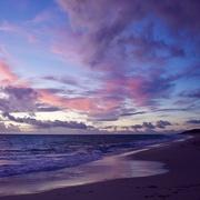 22nd Mar 2020 - Violet Sunset DSC_7528