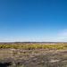 Hincheslea Moor