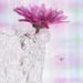 Vase for V by lyndemc