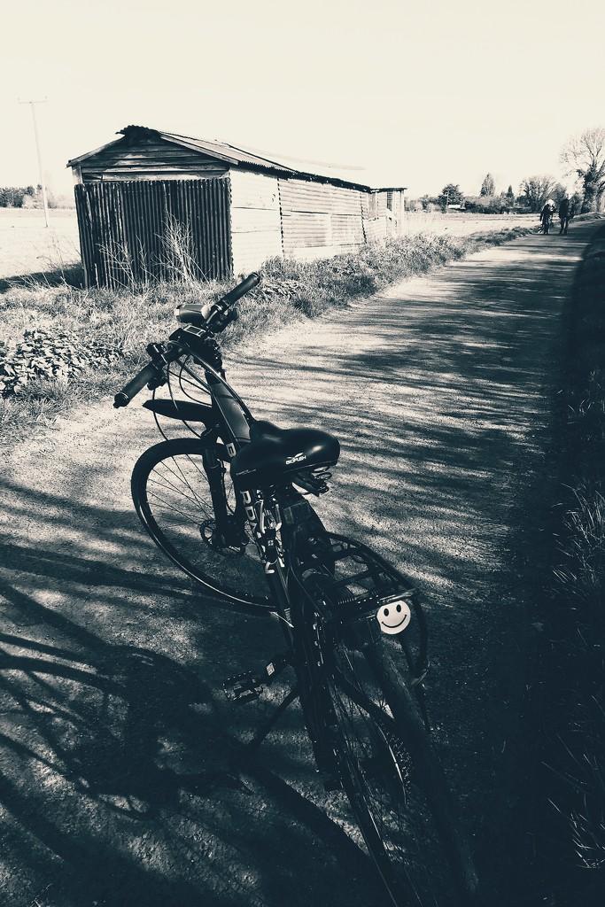 Social isolation - day 2 by photopedlar