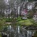 Another View from Garvan Gardens