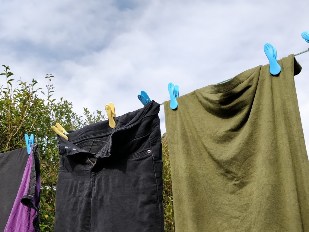 First washing on the line day this year by roachling