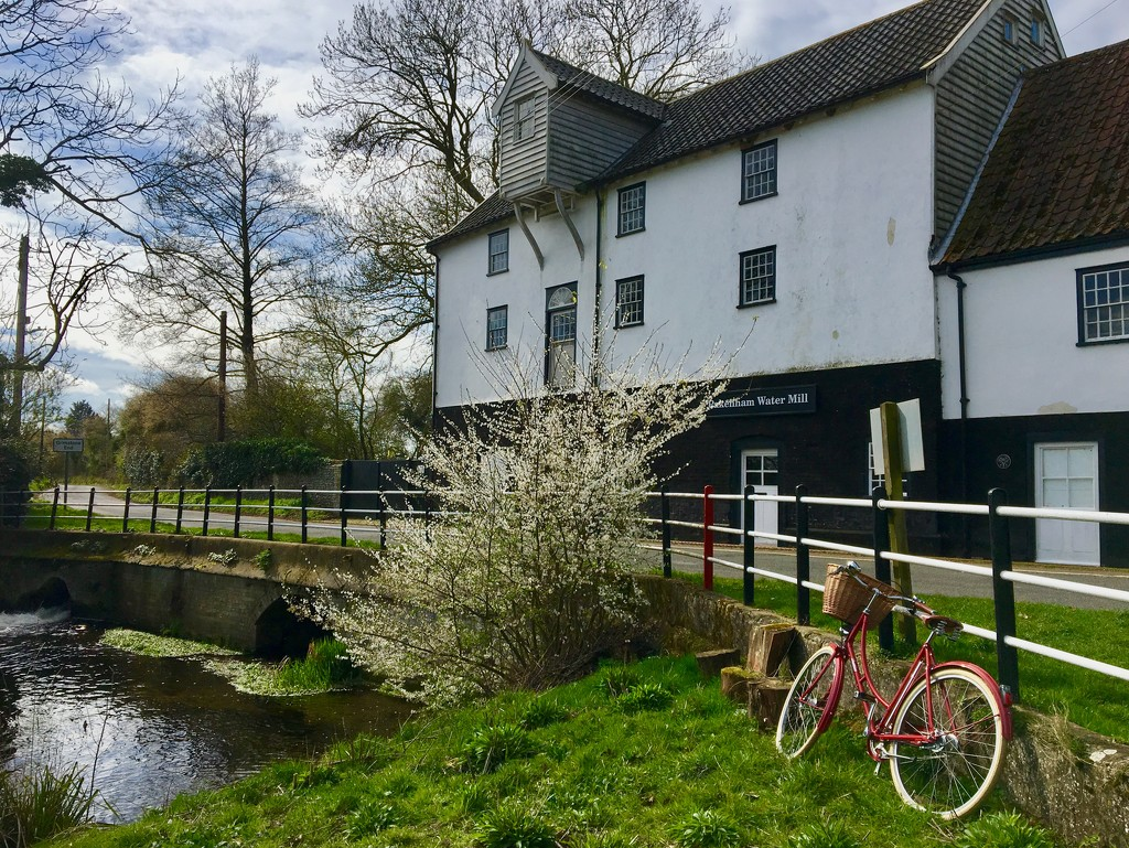Cycling to the Watermill by helly31