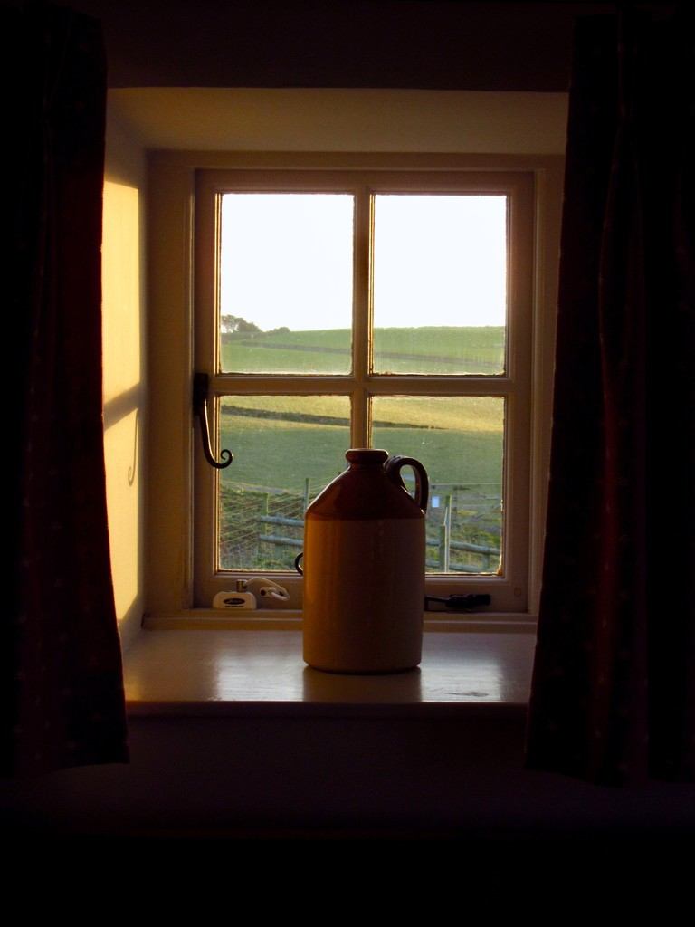 Window  by helly31