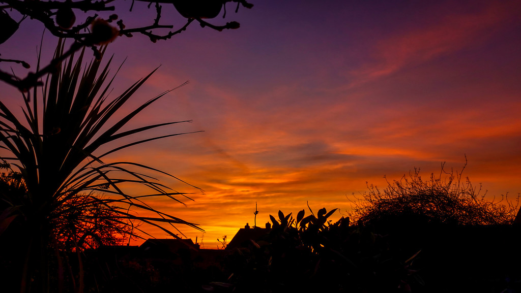 This Mornings Sky.  by tonygig