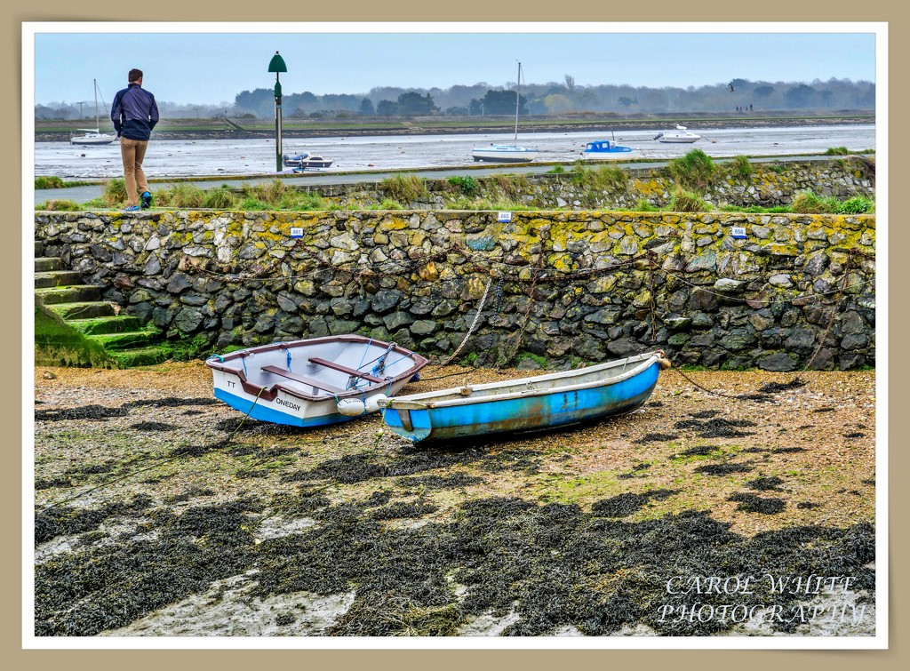 Low Tide At Emsworth Harbour by carolmw