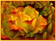 24th Mar 2020 - Rose-petals Confetti