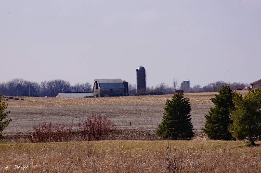 Barn and silo by larrysphotos