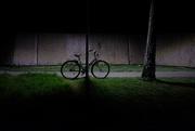 24th Mar 2020 - Night bike