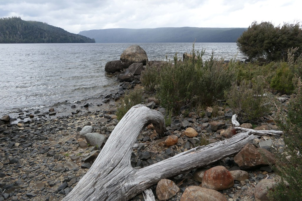 Lake St Clair National Park, Tasmania by hrs