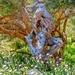 Dylan Lewis scultpture garden