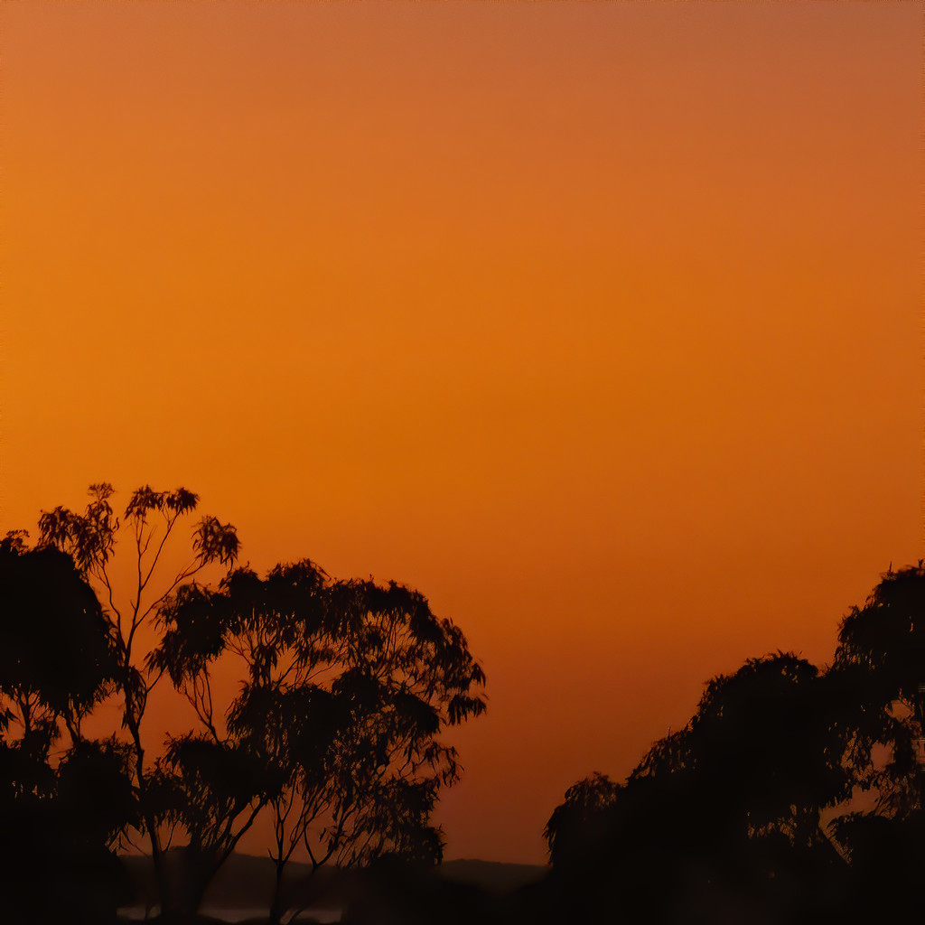 Sunrise by koalagardens