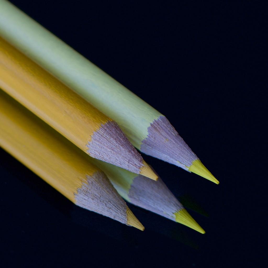 More Pencils DSC_0912 by merrelyn
