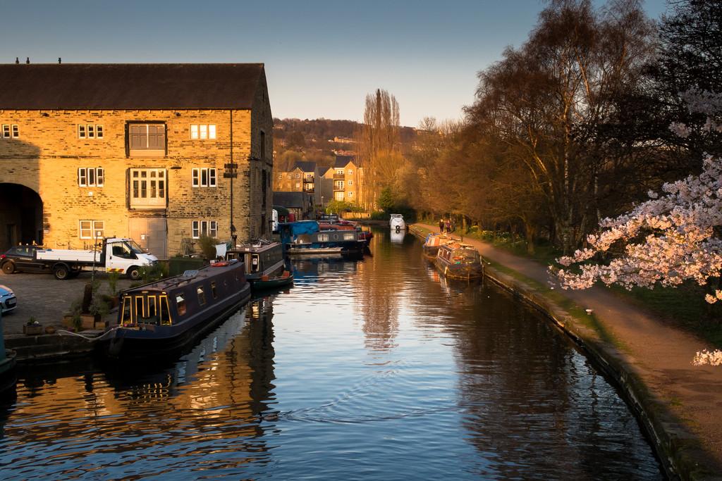 Canal evening by peadar