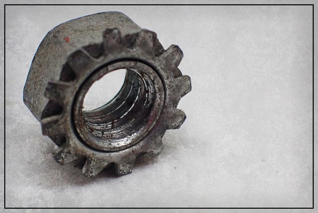 Eye of the Beholder 118 by olivetreeann