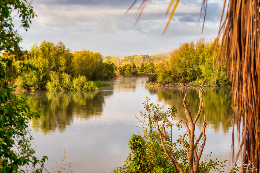 just Me and The Waikato River by yorkshirekiwi