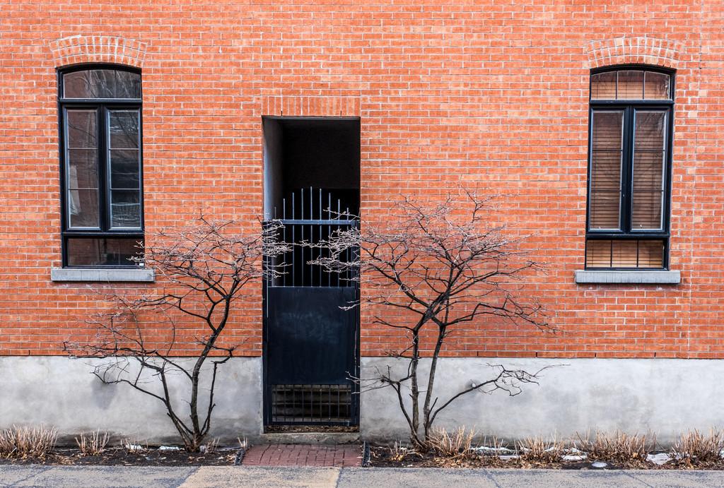 Door and Windows by sprphotos