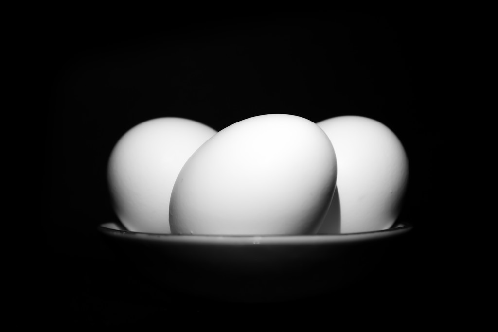 eggs by northy