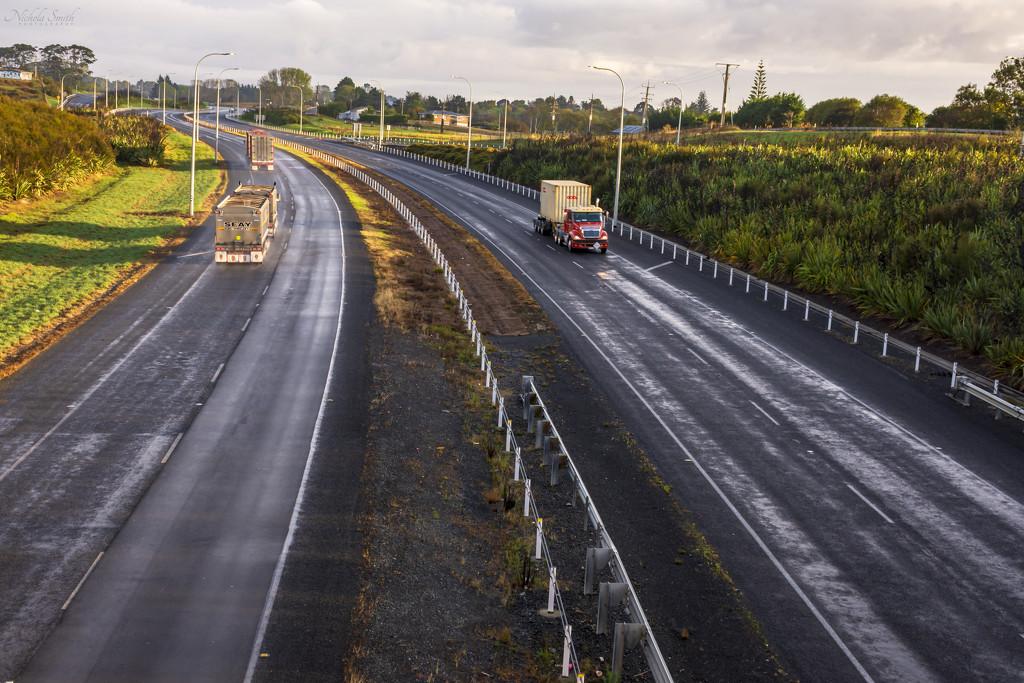 Day 1 of NZ's Lockdown by nickspicsnz