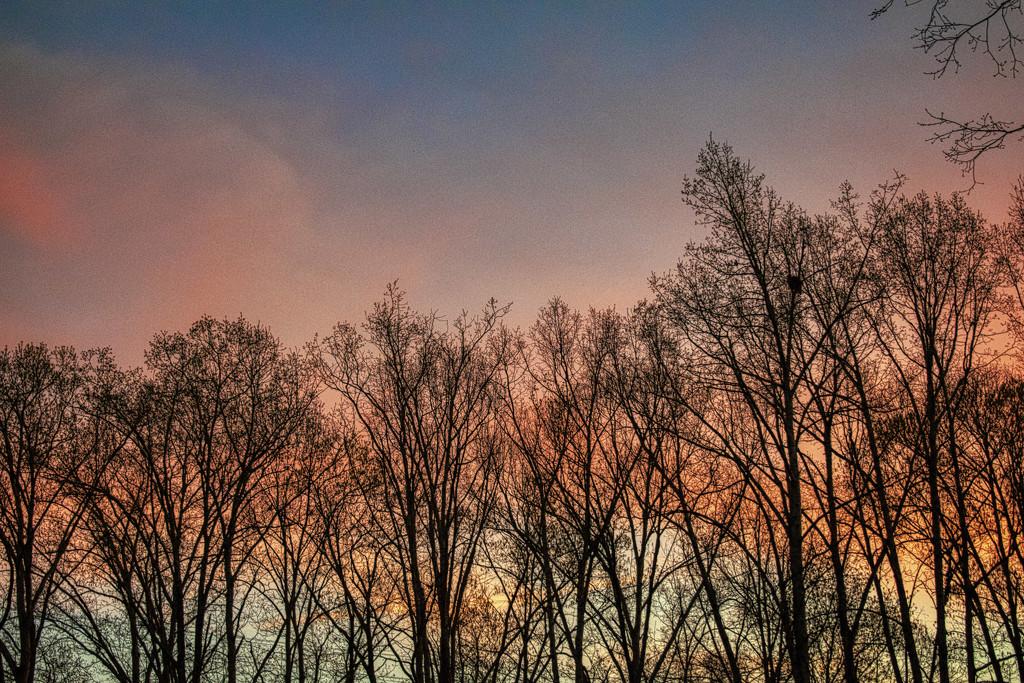 Sunrise North by k9photo